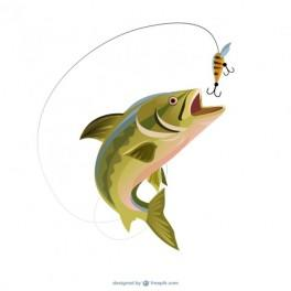 fishing trout illustration free vector 264x264